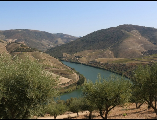 on the way to….Douro