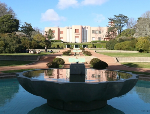 we will always have serralves gardens
