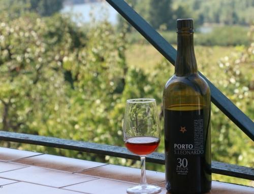 celebrating port wine day – I  @Quinta do Mourão
