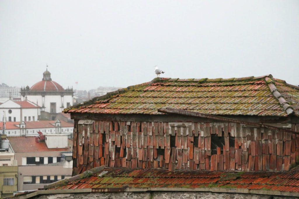 Faculdade-Belas-Artes-Porto