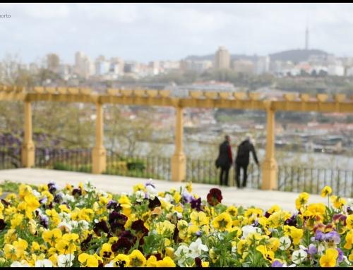 Palácio de Cristal Gardens @Olá Maria Porto Canal