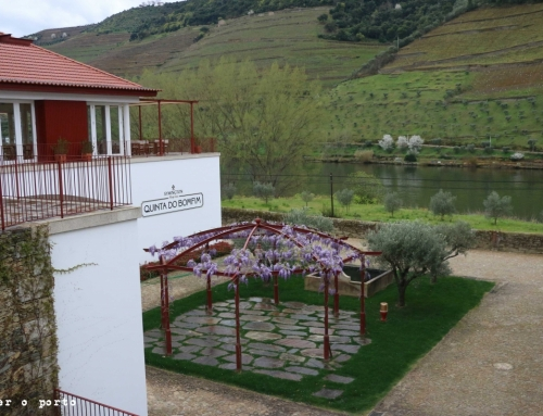 Quinta do Bomfim – a passion history for the Douro Valley