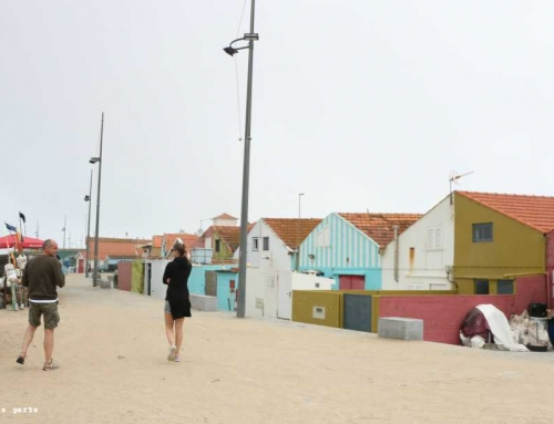 Exploring the North Coast Natural Gems of Portugal with Airbnb