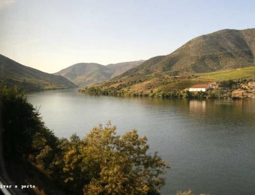 Festa das Vindimas da Quinta da Boeira – celebrar o vinho, as confrarias e a paisagem do Alto Douro Vinhateiro