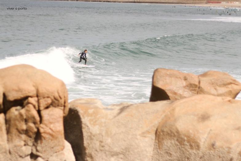Wave Series 2019
