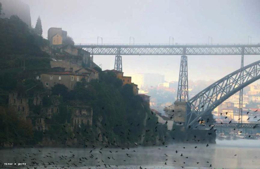 Ode ao Porto