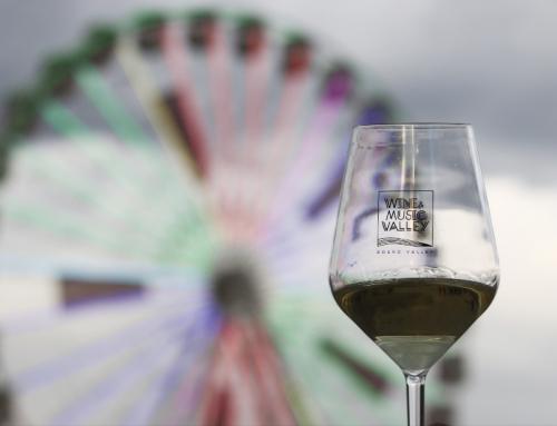 Wine & Music Valley – vinho, música e gastronomia. | O festival no Douro que veio para ficar.