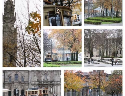 Deambulando pelas cores de Outono – Cordoaria, Porto