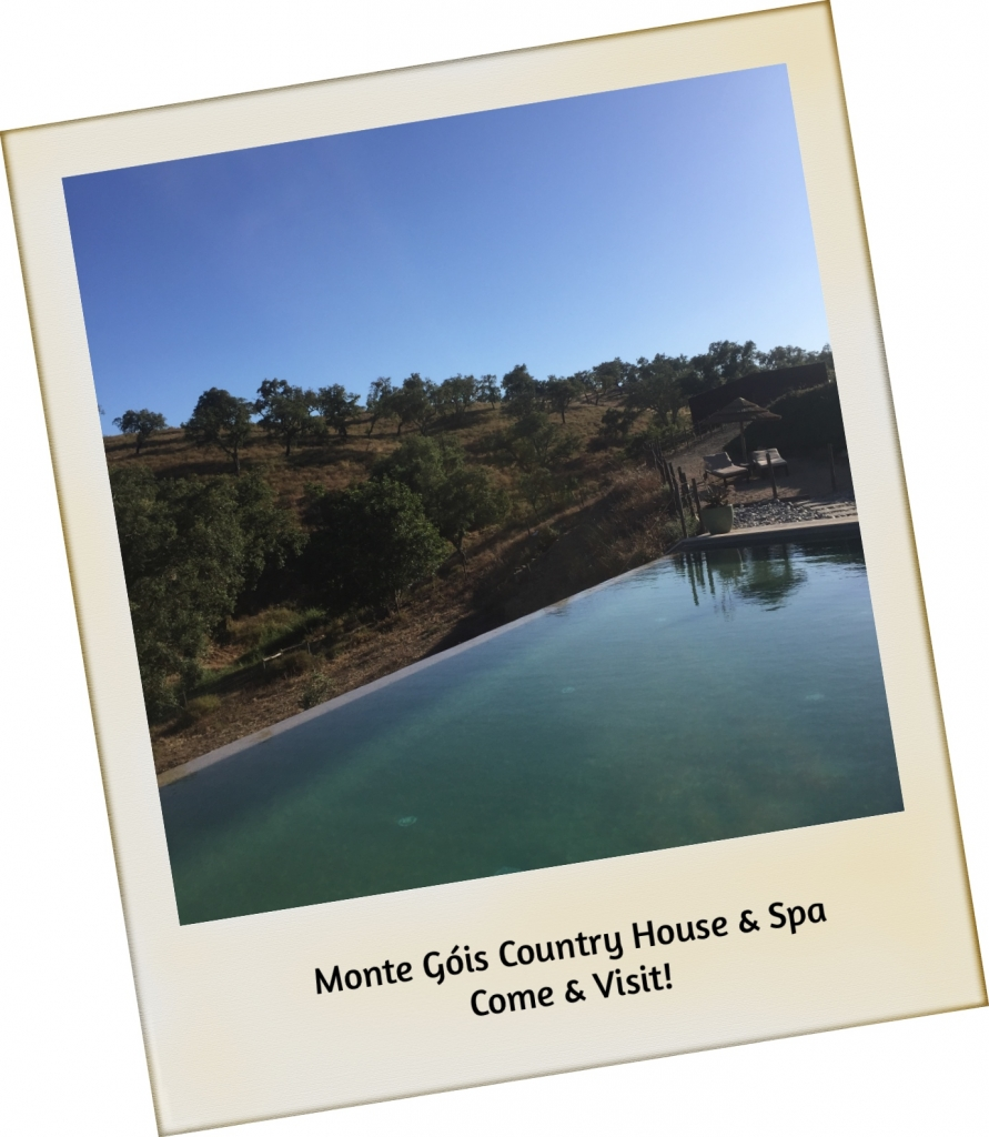 Monte Góis Country House & Spa
