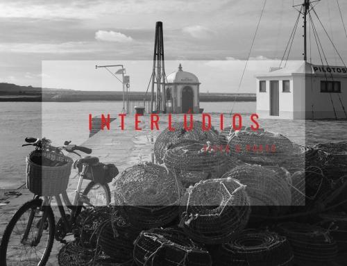 Interlúdios – com Pedro Mendonça| Puro 4050 & Cantina 32