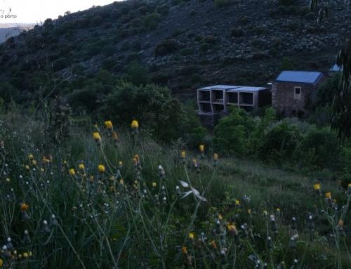 Colmeal Countryside Hotel | Terra de Silêncio