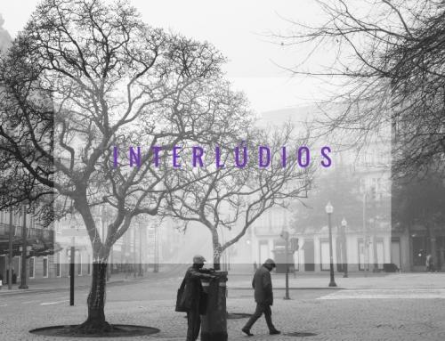 Interlúdios – com a Marta Almeida| Museu de Serralves