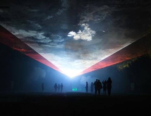 Serralves em Luz | Luz e Cor à noite, no Parque de Serralves